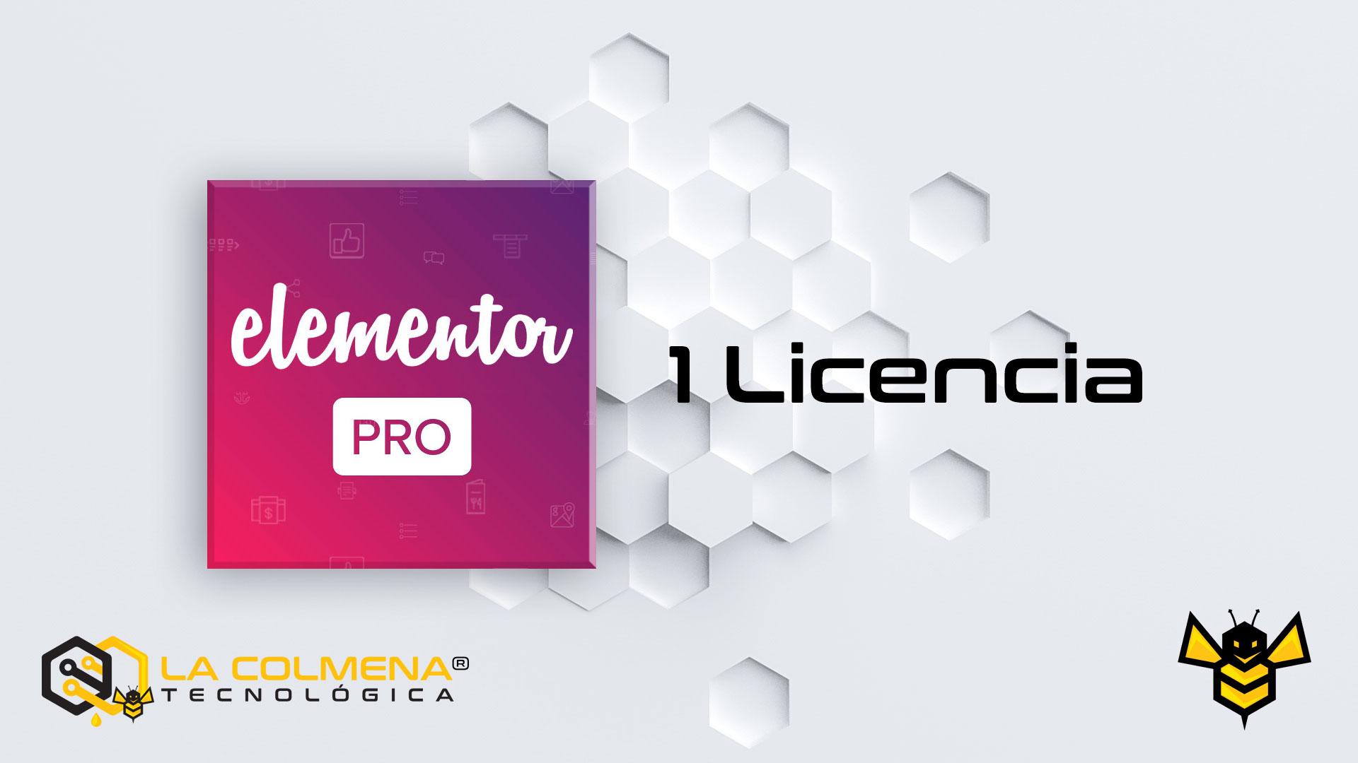 1 Licencia de Elementor Pro