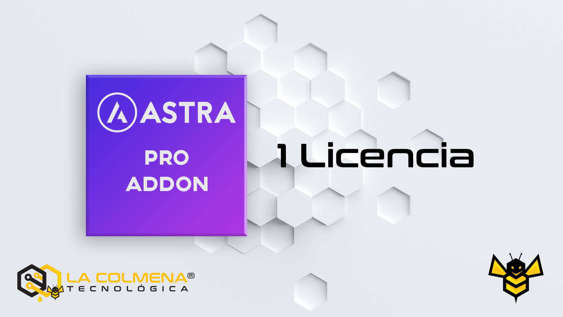 1 Licencia de Astra Pro Addon